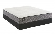 Sealy Response Essentials Introduction Firm Mattress