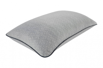 Beautyrest Absolute Rest Pillow