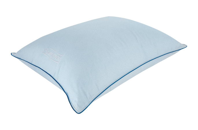 Beautyrest Calming Rest Pillow